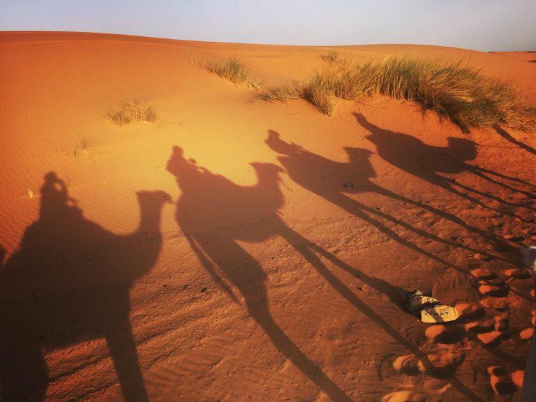 サハラ砂漠ツアーでラクダライド!
