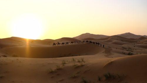 サハラ砂漠ツアー【モロッコ】