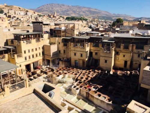 モロッコ フェズ 革工場見学