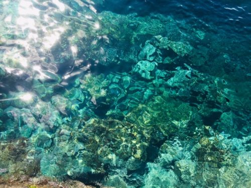 ギリシャ サントリーニ島でエーゲ海を堪能
